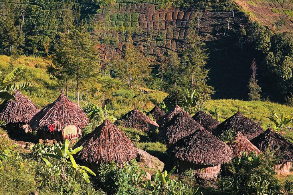 Davor Rostuhar, Zapadna Papua, yali, tribe, west papua, davor rostuhar, dzungla, jungle