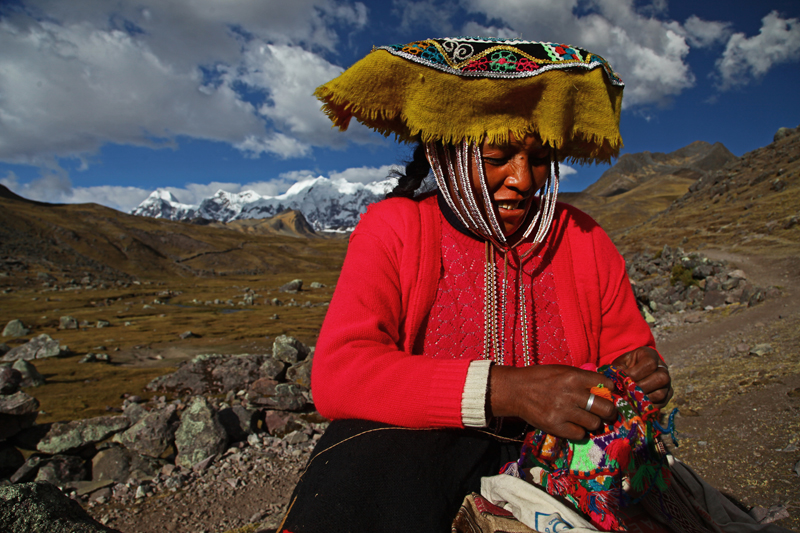 alpaca, ausangate mountain, peru, hiking, treking, treking peru