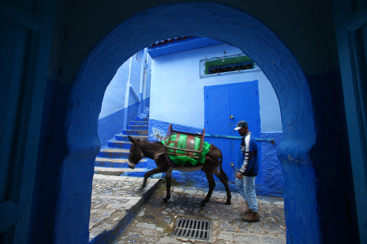 fes, leather painting, morocco, davor rostuhar, fes roofs, leather painting